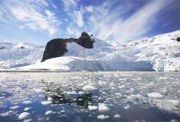 лед в море