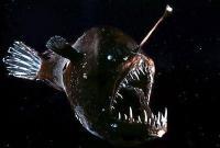 самое страшное существо в мире - фото