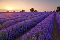 самое красивое места планеты - фото